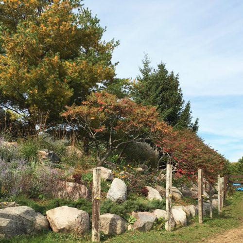 Landscape Lighting Mn: Minneapolis Landscaping