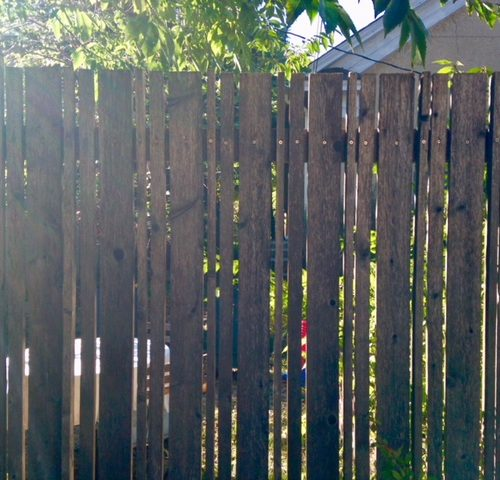 Custom fence detail