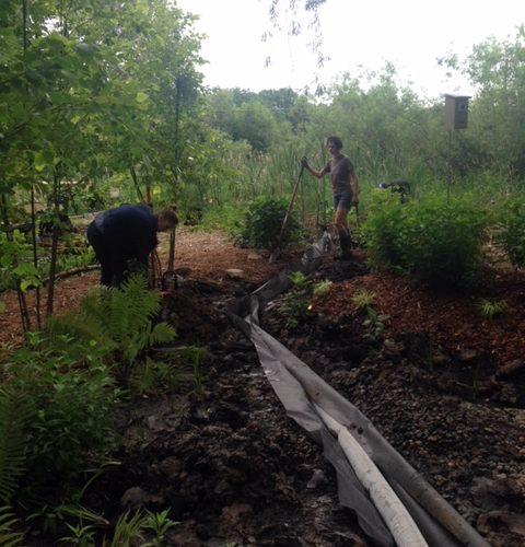Dry creek install