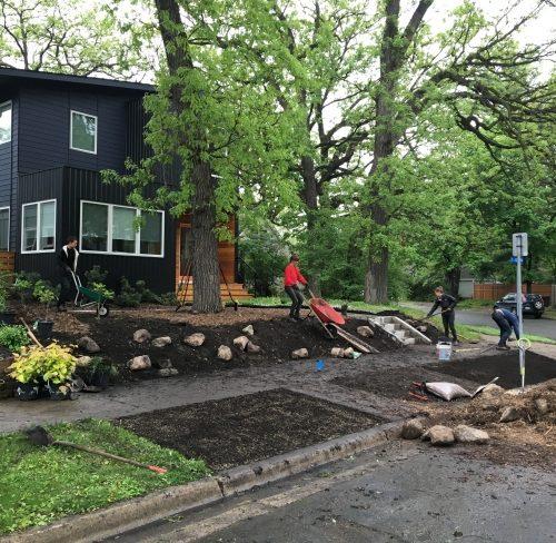 Installing the Urban Oak Savanna