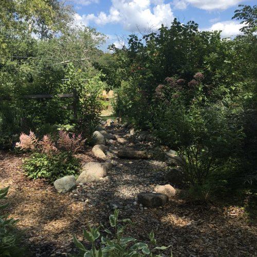 Phase 2 dry creek