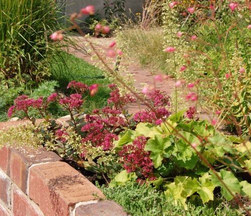 Reclaimed paver petaining beds and path detail