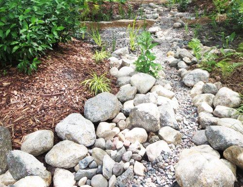 Dry creek detail