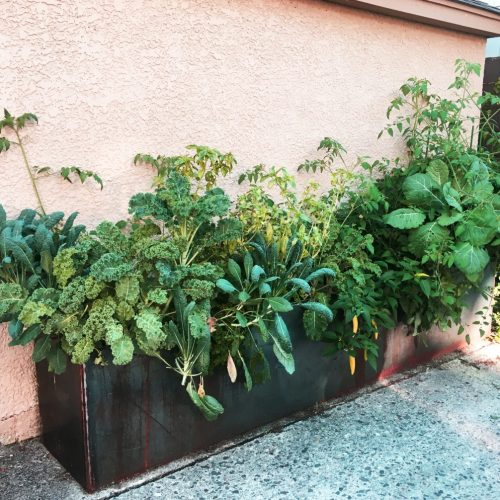 Planters to fit alley spots
