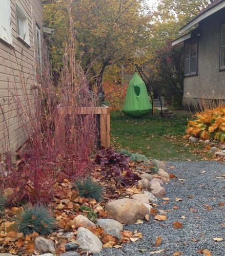 South yard after, fall