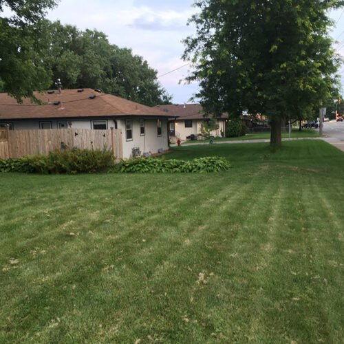 Before - Traditional Lawn - long view