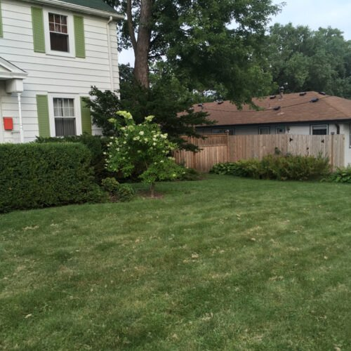 Before - Traditional Lawn
