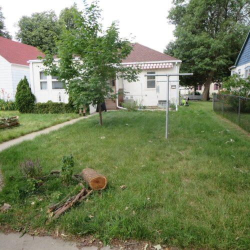 Before: Backyard
