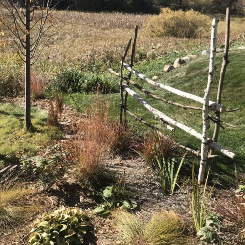 After: Native planting abutting wetland and